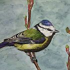 BLUE TIT by Marilyn Grimble