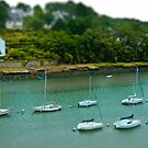 River of Le Bono Auray Brittany France - Tilt Shift Effect by Buckwhite