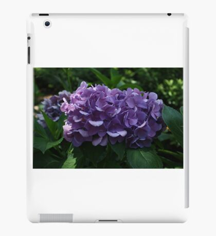 Intense Purple Hydrangea  iPad Case/Skin