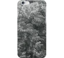 high wind in lime trees iPhone Case/Skin