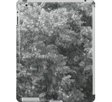 high wind in lime trees iPad Case/Skin