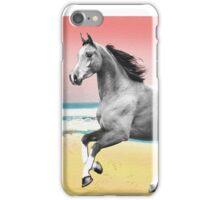 Beach Horse Justin Beck Picture 2015081 iPhone Case/Skin