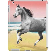 Beach Horse Justin Beck Picture 2015081 iPad Case/Skin