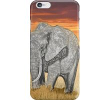 Savana Elephant Justin Beck Picture 2015085 iPhone Case/Skin