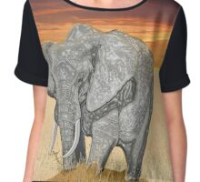 Savana Elephant Justin Beck Picture 2015085 Chiffon Top