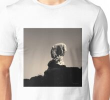 Arches NP XVII Toned Unisex T-Shirt