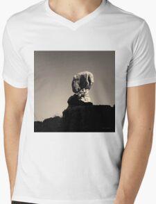 Arches NP XVII Toned Mens V-Neck T-Shirt
