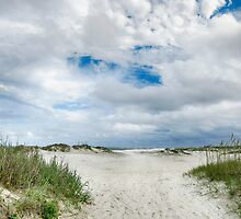 Pawleys Island Beach by Kathy Baccari