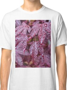 Japanese Acer Palmatum Atropurpurea Shrub Classic T-Shirt