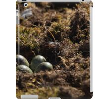 Close-up of four eggs in sandpiper nest iPad Case/Skin