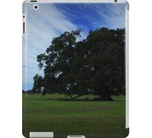 Fig Tree near Maclean iPad Case/Skin