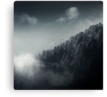 Misty Woodland Canvas Print