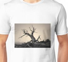 Arches NP VI Toned Unisex T-Shirt