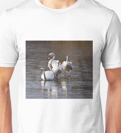 Negotiating the Ice Unisex T-Shirt