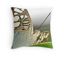 Clipper Butterfly Throw Pillow