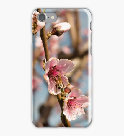 Collecting honey iPhone Case/Skin