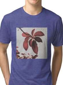 true beauty comes from within Tri-blend T-Shirt