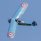 Morane Saulnier MS.317 G-MOSA 351/HY22 by Colin Smedley