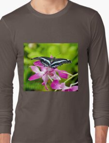 African Blue Banded Swallowtail Butterfly Long Sleeve T-Shirt