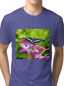 African Blue Banded Swallowtail Butterfly Tri-blend T-Shirt