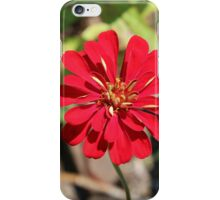 Single Red Flower iPhone Case/Skin
