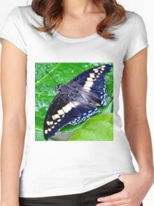 Checkered Lime Swallowtail Butterfly Women's Fitted Scoop T-Shirt