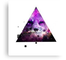 Fox Space Canvas Print