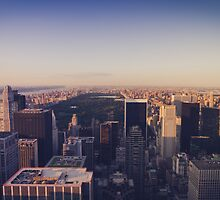 Central Park - NYC by thomasrichter