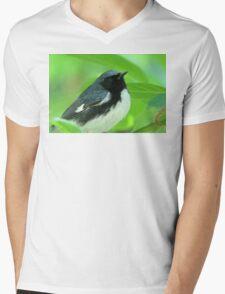 Black-throated Blue Warbler Mens V-Neck T-Shirt