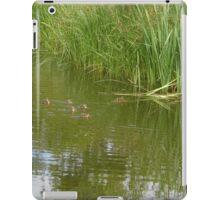 paddling ducklings iPad Case/Skin