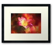 Lily Summer Splash Framed Print