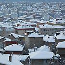 Snow by rasim1