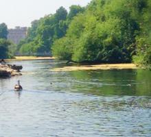 Water River Sticker