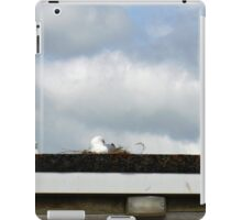 On Guard Duty........ iPad Case/Skin