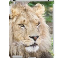 629 Sunshine iPad Case/Skin