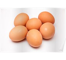 eggs on white background Poster