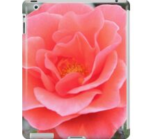 Salmon pink rose iPad Case/Skin