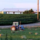 Little Blue Ford Tractor...Caldwell, Idaho....farm country by Diane Arndt