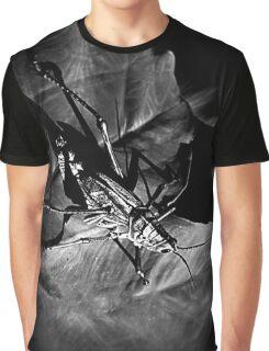 Grass Hopper's Spotlight Graphic T-Shirt
