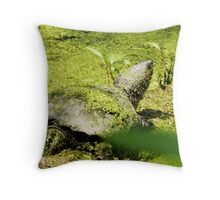 Snapping Turtle & Frog Tanning. Throw Pillow