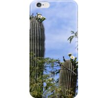 Saguaro Cactus Blooms iPhone Case/Skin