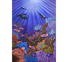 Underwater coral reef Photographic Print