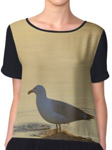 Larus Smithsonianus - American Herring Gull | Orient, New York Chiffon Top
