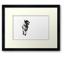 Jack Russel Terrier Dog Framed Print