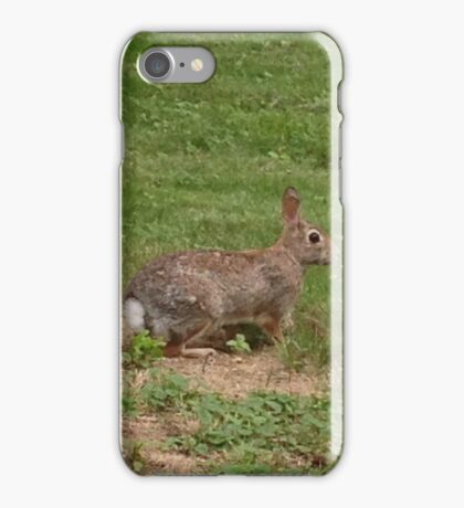 Peter the Rabbit iPhone Case/Skin