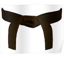 Martial Arts Brown Belt Poster