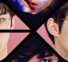 Sehun Exact Monster/Lucky One Teaser Sticker