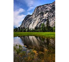 Reflecting in the Meadow Photographic Print