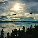 Tahoe Blues by Barbara  Brown