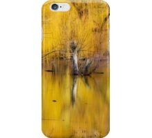 A Magical Confluence iPhone Case/Skin